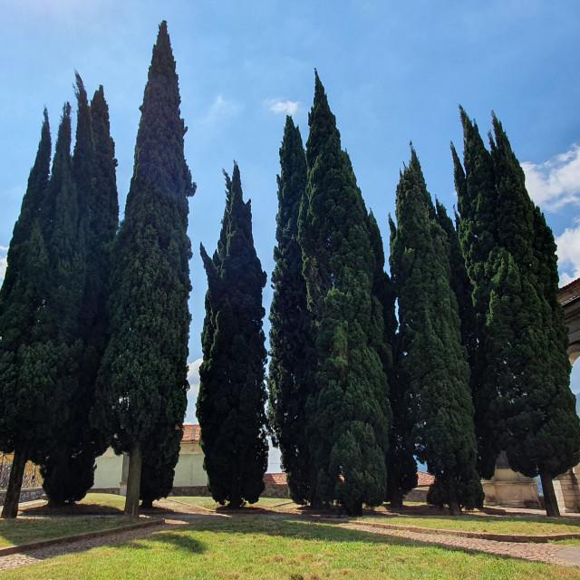 """Italy landscape"" stock image"