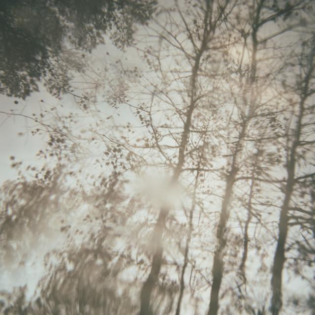 """""""Chromatic Reflection III"""" stock image"""