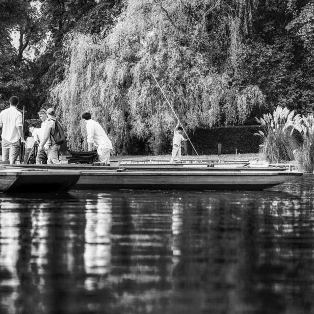 """Punting from the River Cam in Black and White, Cambridge UK."" stock image"