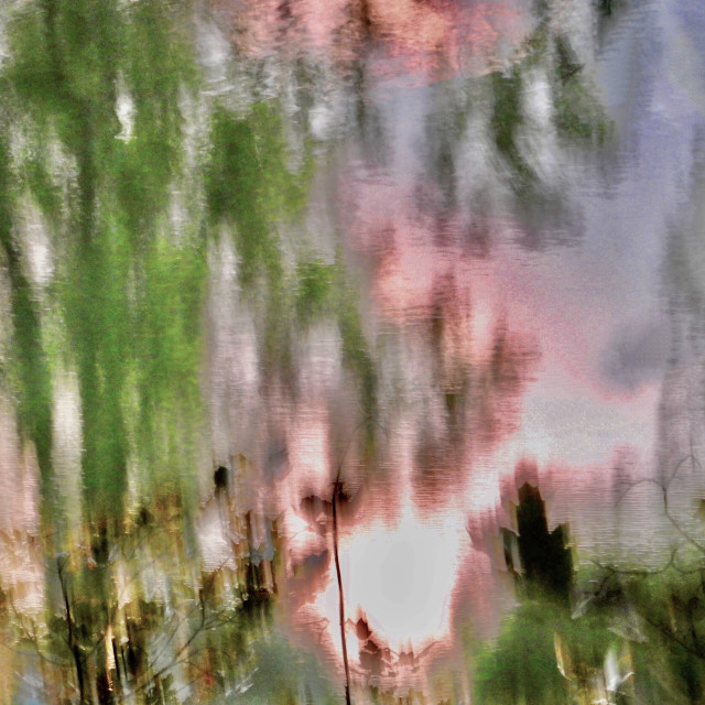 """""""Pink Reflections"""" stock image"""