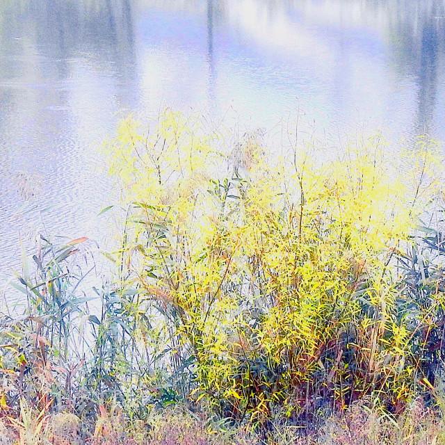 """River Pastels"" stock image"