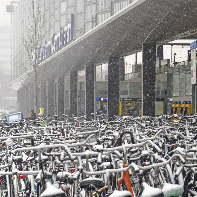 """""""Bicycles at the central station"""" stock image"""