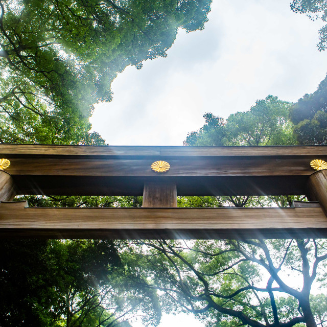 """Torii Gate Entrance to Meiji Jingu"" stock image"