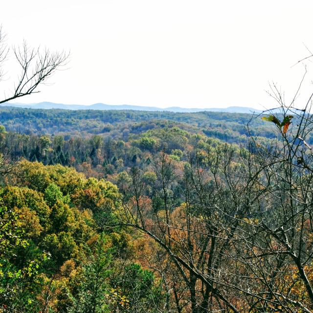 """Lookout at Cumberland Falls area"" stock image"