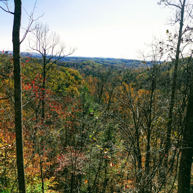 """""""Scenic Overlook in the fall"""" stock image"""