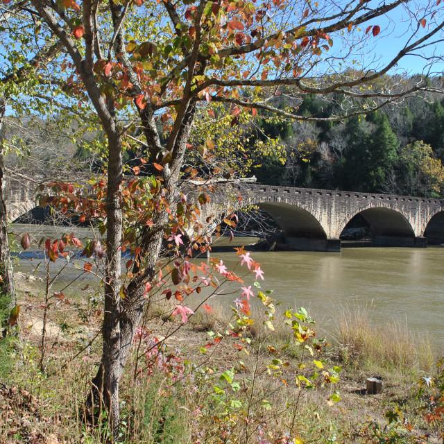 """Bridge over Cumberland River"" stock image"