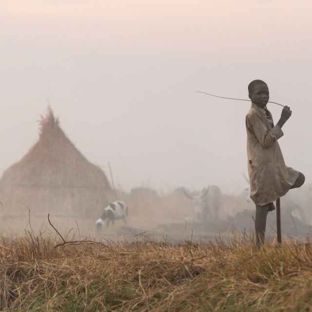 """""""Mundari tribe boy in the middle of long horns cows in a cattle camp, Central..."""" stock image"""