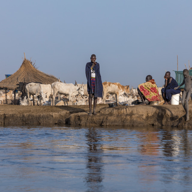 """""""Mundari tribe people in a cattle camp along the river bank of the Nile,..."""" stock image"""