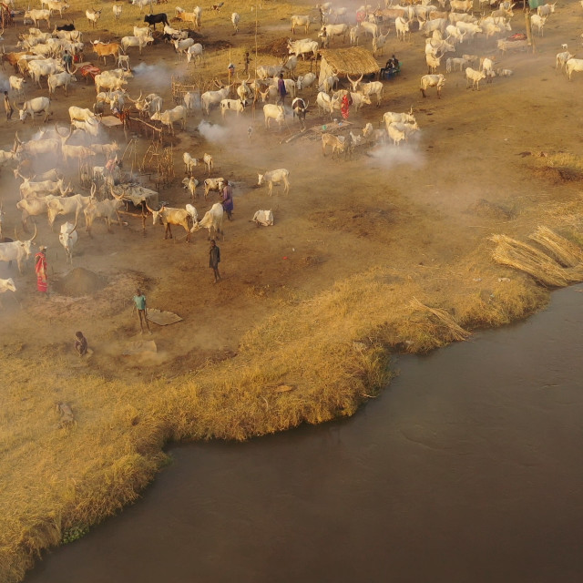 """""""Aerial view of long horns cows in a Mundari tribe cattle camp in front of..."""" stock image"""