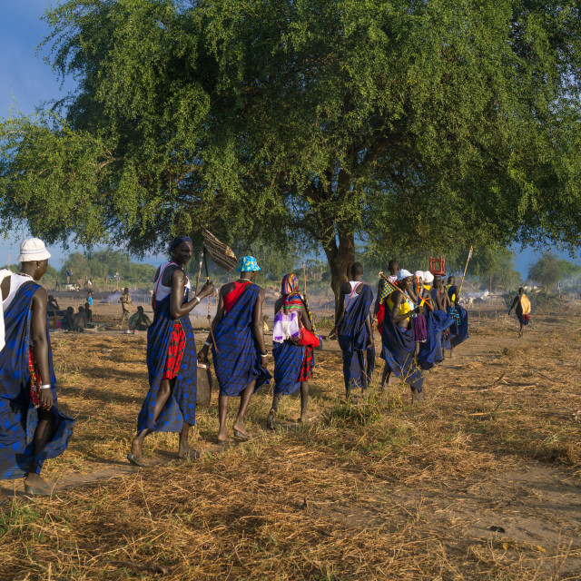 """""""Mundari tribe women marching in line while celebrating a wedding, Central..."""" stock image"""