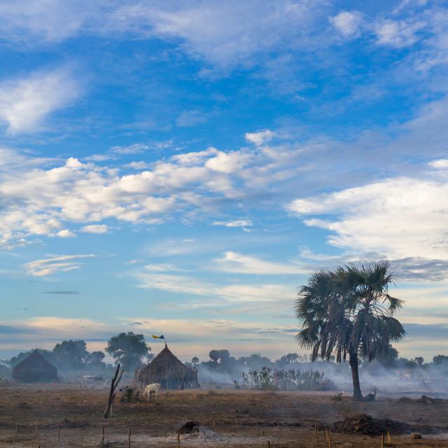 """Mundari village in the smoke of the bonfires, Central Equatoria, Terekeka,..."" stock image"