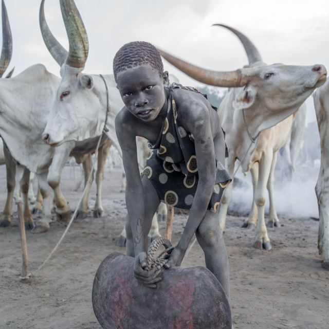 """""""Mundari tribe boy with a huge bell covered in ash taking care of long horns..."""" stock image"""