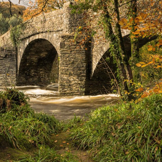 """Austins Bridge - River Dart"" stock image"