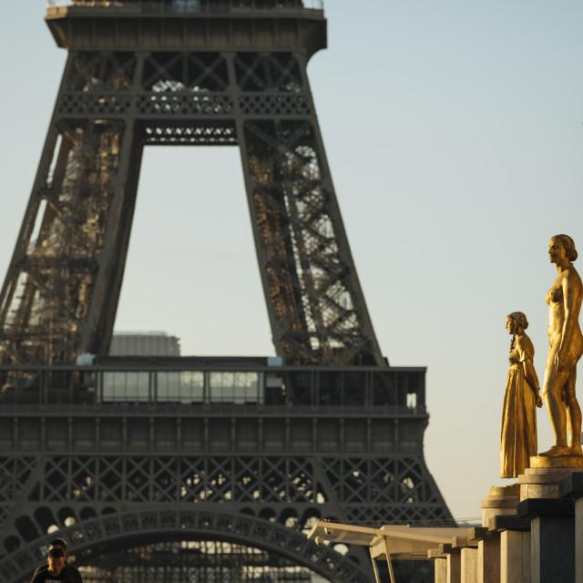 """""""Palais de Chaillot and Eiffel Tower, Paris, Île-de-France, France, Europe"""" stock image"""