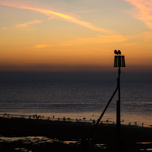 """Sitting Watching Sunrise at Dovercourt"" stock image"
