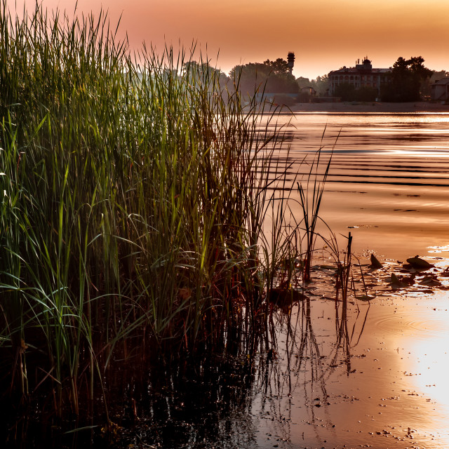 """""""View of the Foggy Dnieper River at morning, after the sunrise"""" stock image"""