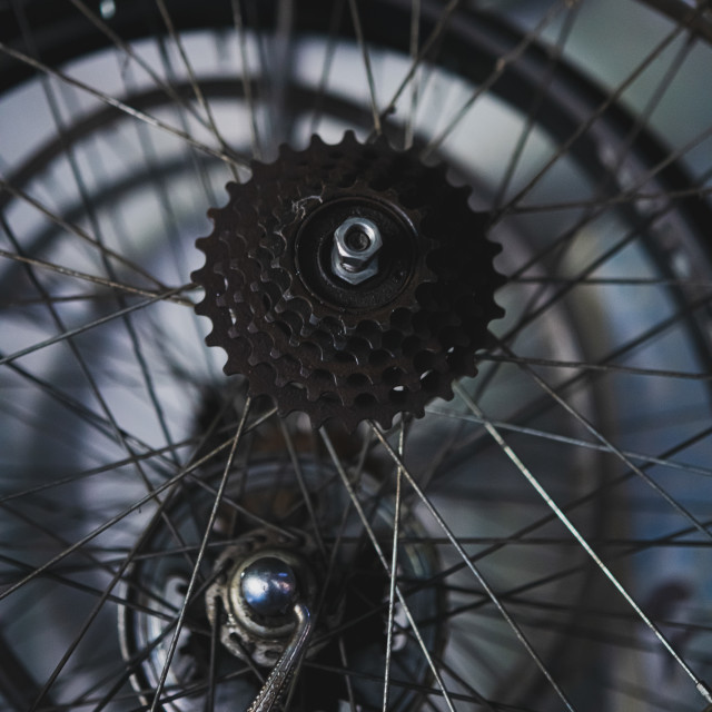 """""""Detail of old bicycle wheel rim and gear hanging in abandoned wo"""" stock image"""