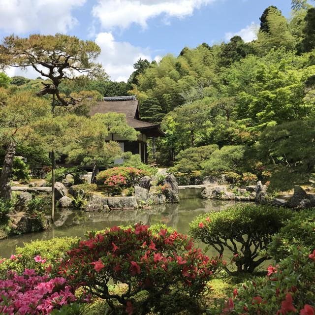 """""""Zen Garden in Kyoto, Japan"""" stock image"""