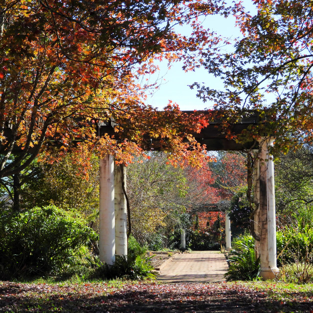 """Autumn Garden Scene"" stock image"