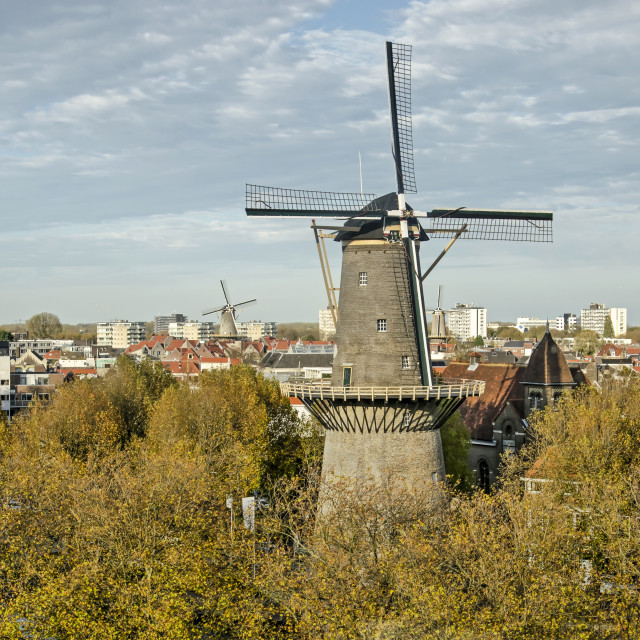 """The windmills of Schiedam"" stock image"