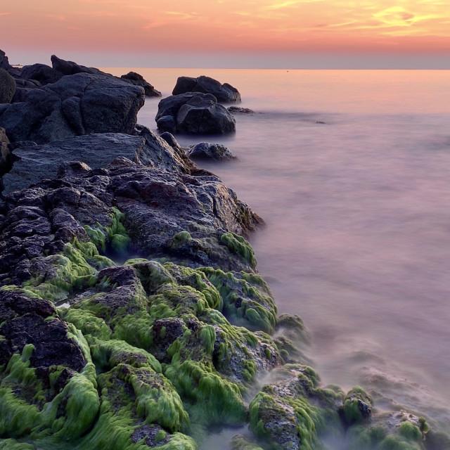 """""""Beautiful summer sunset on sea shore"""" stock image"""