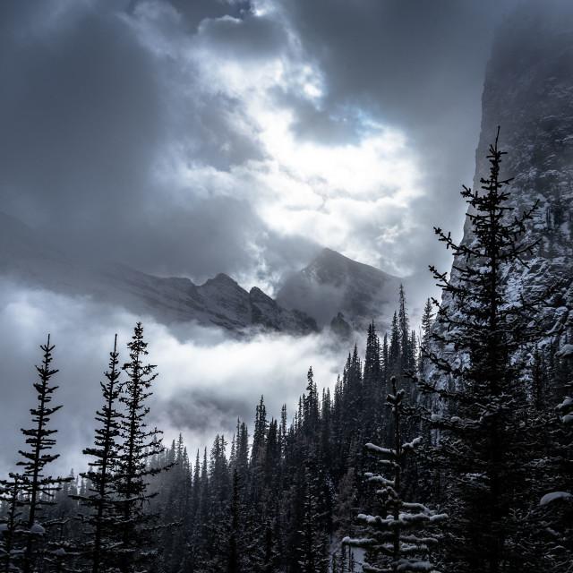 """""""Canadian paradise"""" stock image"""