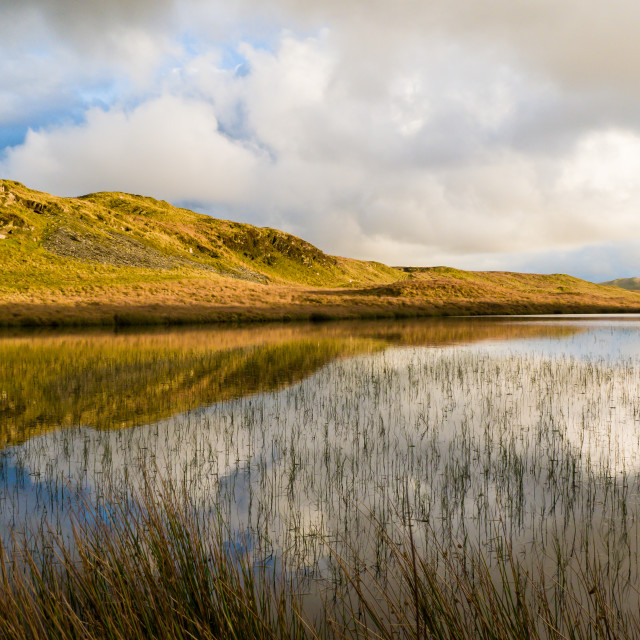 """""""Pool in Cambrian Mountains"""" stock image"""