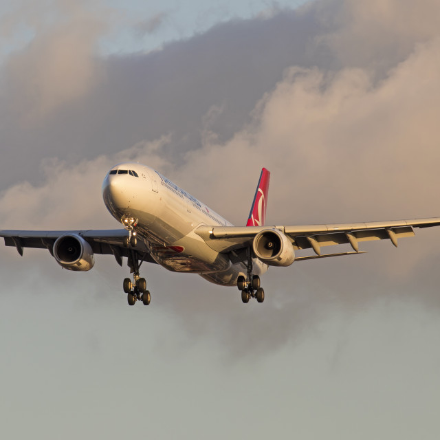 """""""TC-LOF Airbus A330-343 Turkish Airlines"""" stock image"""