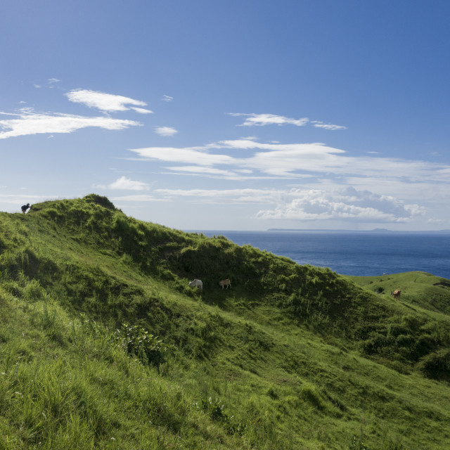 """""""Aerial view landscape of Batanes Island in Philippines."""" stock image"""