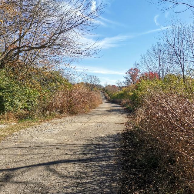 """Lonely Lane"" stock image"