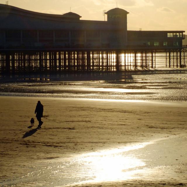 """""""Weston Super Mare Grand Pier"""" stock image"""