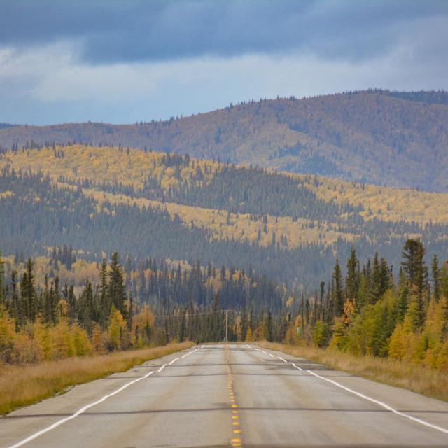 """Fall in Alaska"" stock image"