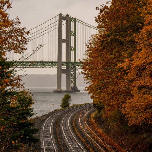 """""""Fall in the narrows"""" stock image"""