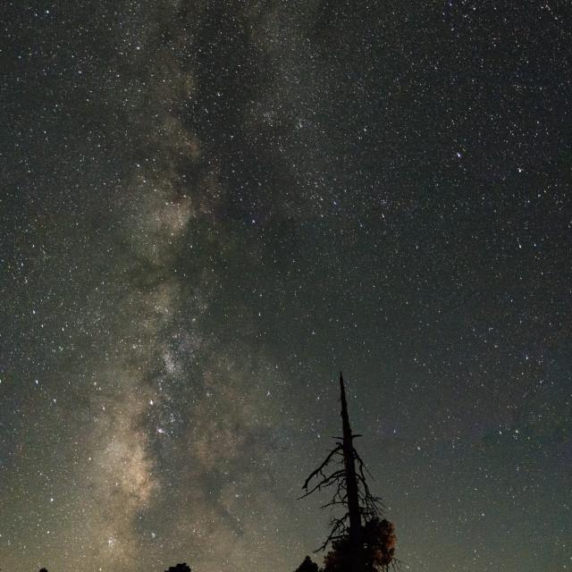 """Camp Sights"" stock image"