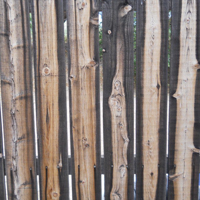 """""""Fence, wooden"""" stock image"""