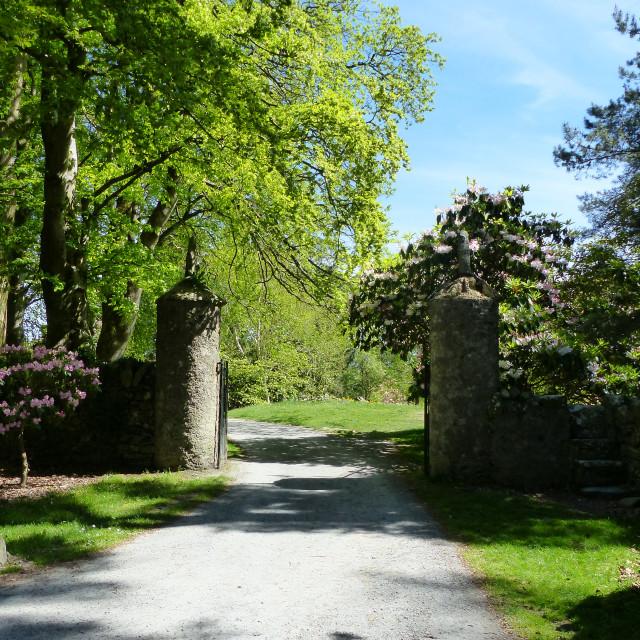 """""""Stone pillars entrance to woodland"""" stock image"""