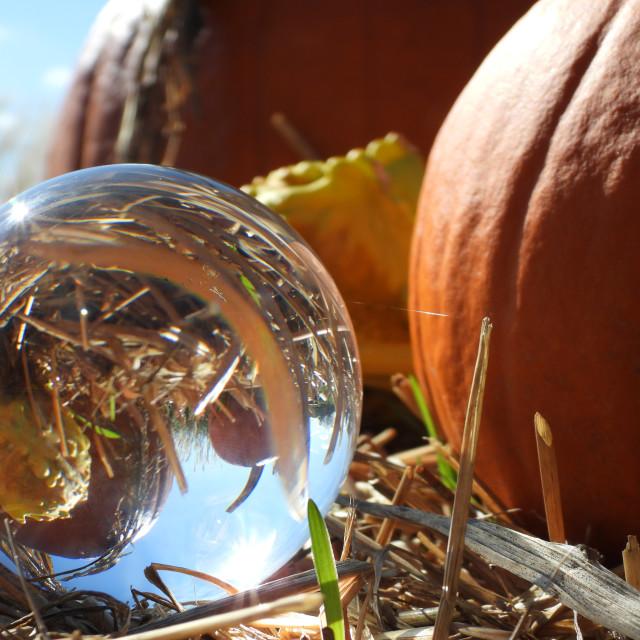 """Crystal Ball and Pumpkin"" stock image"