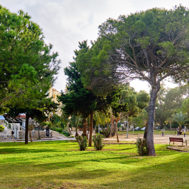 """""""Tropical park with outdoor fitness equipment. Spain"""" stock image"""