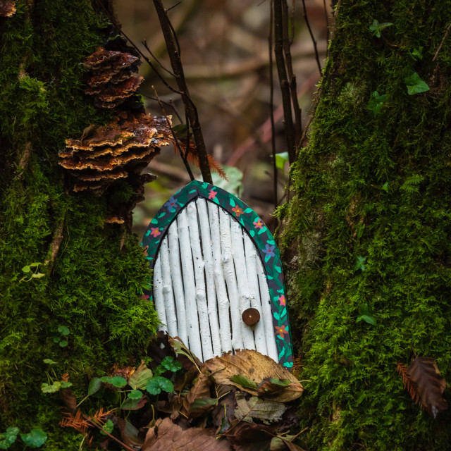 """Toy pixie door on mossy tree."" stock image"