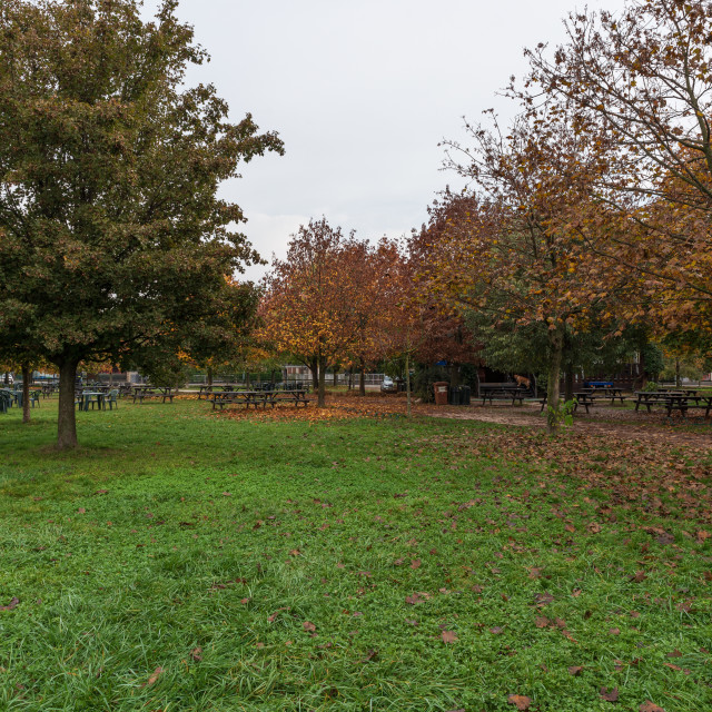 """City park on an autumn morning"" stock image"