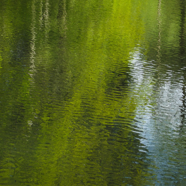 """""""Reflecting on Water #9"""" stock image"""