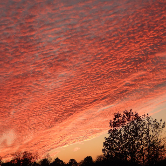 """Spectacular South Carolina Sunset"" stock image"
