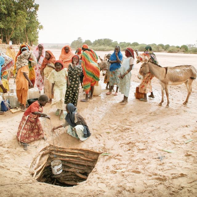 """""""Water Crisis - Kampf ums Wasser in der Tschad Region"""" stock image"""