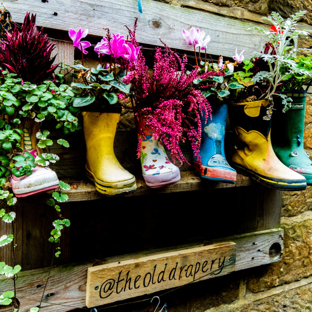 """""""Flowers displayed in Quirky Wellingtons at the Old Drapery, Robin Hoods Bay, Yorkshire."""" stock image"""