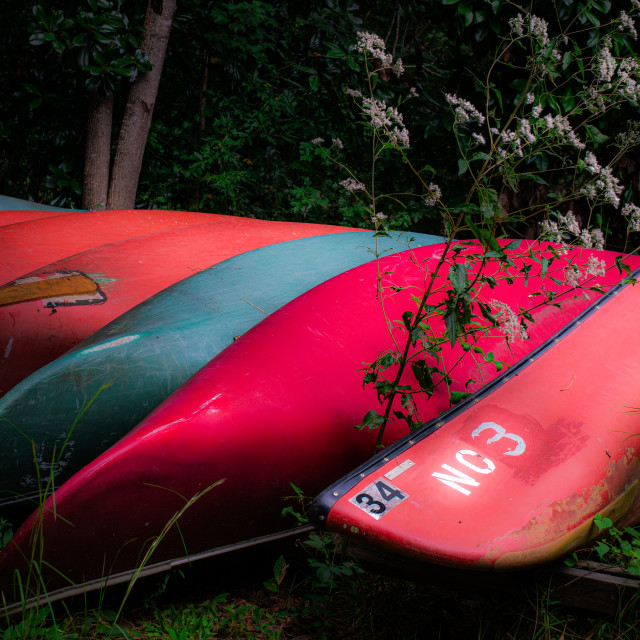 """""""Old Canoes"""" stock image"""