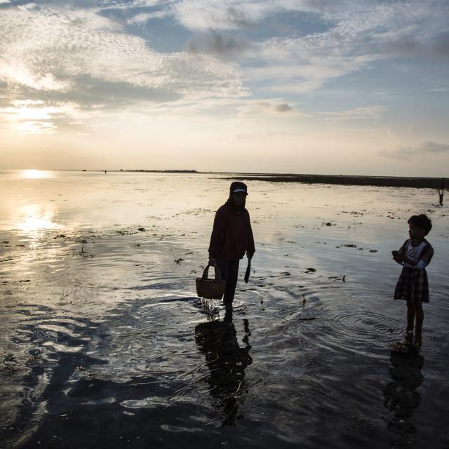 """Batasan Island in the Danajon Bank faces sea-level rise"" stock image"