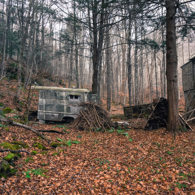 """""""Abandoned Trailer In Woods"""" stock image"""