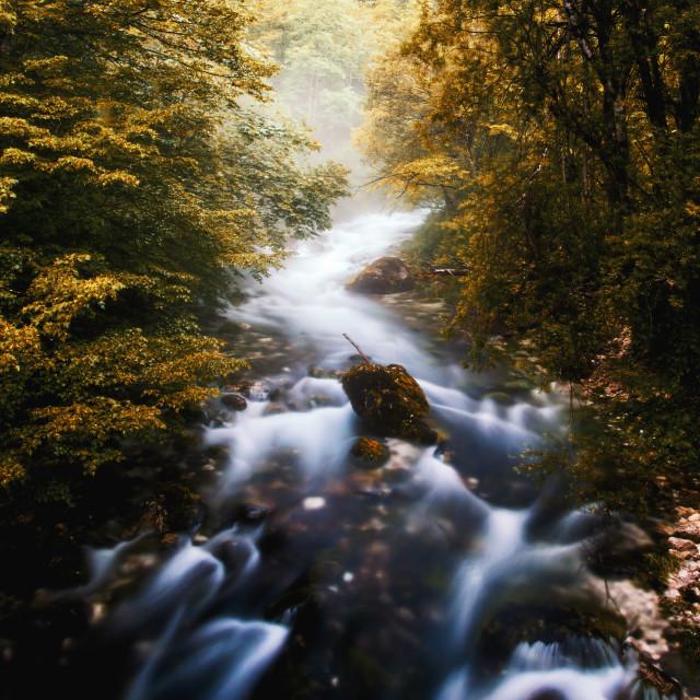 """Autumn brook"" stock image"