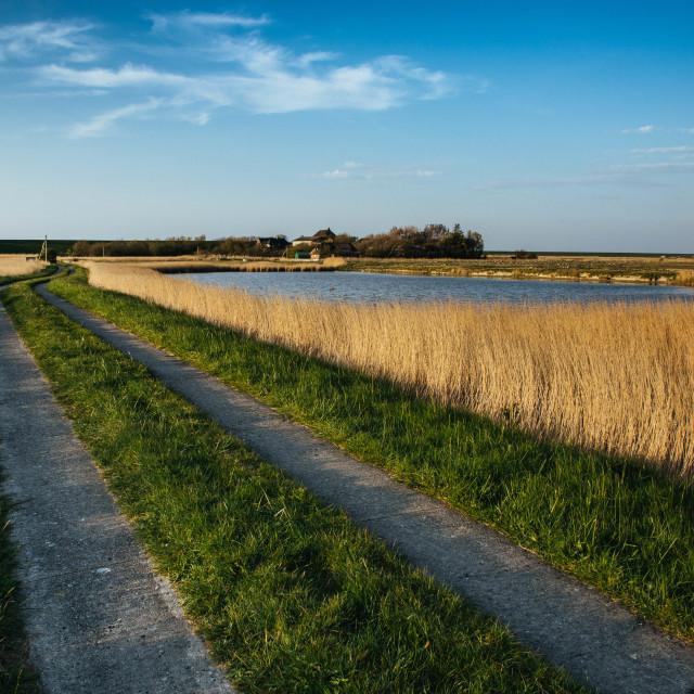 """""""Nordfriesische Landschaft auf Eiderstedt"""" stock image"""