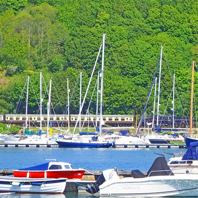 """""""Dartmouth Steam Railway South DEvon"""" stock image"""